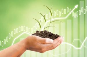 evaluate real estate investings